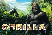 Gorilla играть онлайн в Вулкан