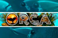 Orca игровой автомат с выводом денег