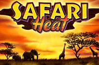 Safari Heat автоматы бесплатно