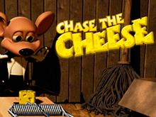 Преследуй Сыр в казино Вегас и приз от Betsoft